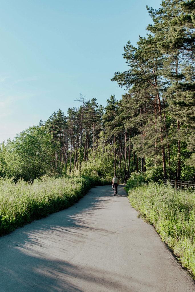 спортивные трассы в лесу около турбазы «Робин Гуд»