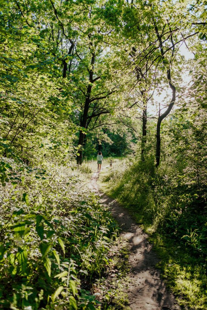 прогулки в лесу около турбазы «Робин Гуд»
